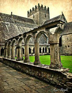 Holy Cross Abbey, Co Tipperary..