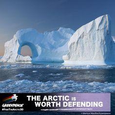 Greenpeace (Greenpeace) on Twitter