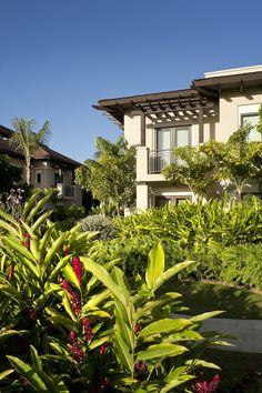 Bahia Beach Resort  Golf Club. Resort residences set amid lush landscape. Designed by SB Architects