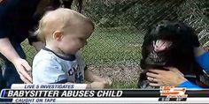 Dog alerts parents to abusive babysitter