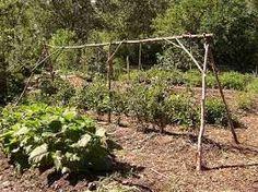 rustic gardening ideas - Google Search
