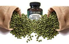 Green Coffee Bean Max - Este increíble suplemento para la pérdida de peso solo contiene dos extractos de granos de café verde puro, incluyendo 50% de ácido clorogénico del extracto antioxidante de café verde (GCA, Green Coffee Antioxidant Extract). No contiene aditivos ni conservantes.