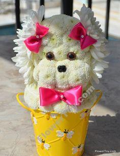 FlowerToy Marilyn Mini Doggy Flower Cake Design, Flower Designs, Floral Design, Thyme Flower, Flower Pots, Unique Flowers, Fresh Flowers, Puppy Flowers, Modern Floral Arrangements