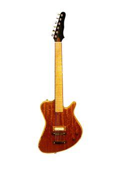 Roper Guitars Custom... like the pickup