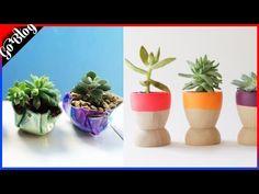 Más de 50 Ideas de macetas para plantas muy CREATIVAS - YouTube