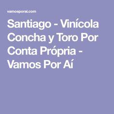 Santiago - Vinícola Concha y Toro Por Conta Própria - Vamos Por Aí