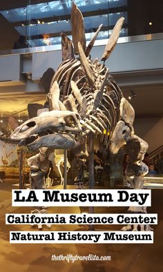 Love museums? Los Angeles is the perfect place! There are a TON of museums in every discipline (art, history, ice cream) all over the city, but my favorite two are right next to each other on the USC campus.