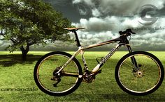 Fondo de pantalla/Desktop/Cannondale Taurine SL2 2009     Improve Your Way of Life Radically just by Accepting my $77 Present for Free NOW!