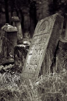 Abandoned Jewish cemetary in Otwock.