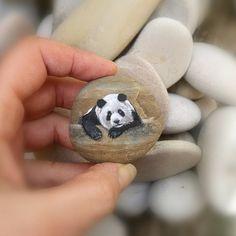 Ho dipinto il panda, il resto è la pietra così come l'ho raccolta...  #panda #panda #pandas #tiny #pebblepainting #rockpainting #rockart #stoneart #paintedstone #paint #acrylicpainting #pedrapintada #handpaint #handmadegifts #handmade #gift #aledeco #fattoamano #artist #miniature