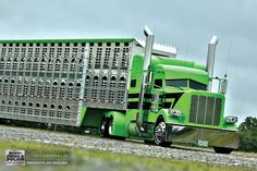 Dan Brubaker, 2014 Peterbilt 389 and 2015 Wilson livestock trailer