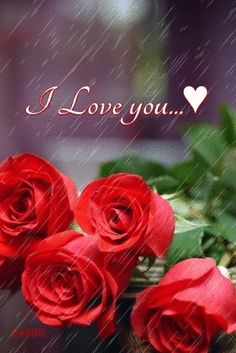 Welcome to my blog. This blog is dedicated to my love, my life....I Love You Beautiful.DISCLAIMER:...