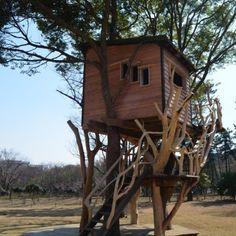Makeseen-takashi kobayashi-treehouses-gallery-00-higashi_izu