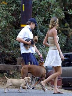 Leonardo DiCaprio has a whole brood of dogs