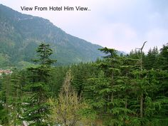 Budget Hotel in Manali | Budget Hotels in Manali Near Mall Road | Budget Hotels Manali