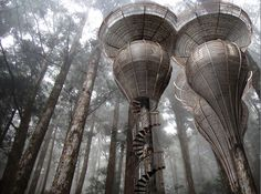 Antony Gibbon's Lord of the Rings-Style Treehouses Could Offer Elvish Accommodations for Humans