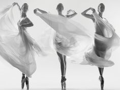 The Australian Ballet - Photographer: Tim Richardson