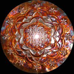 Rose of Life Lightmandala
