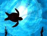 Artsonia Art Exhibit :: Deep Blue Sea Monochromatic Paintings