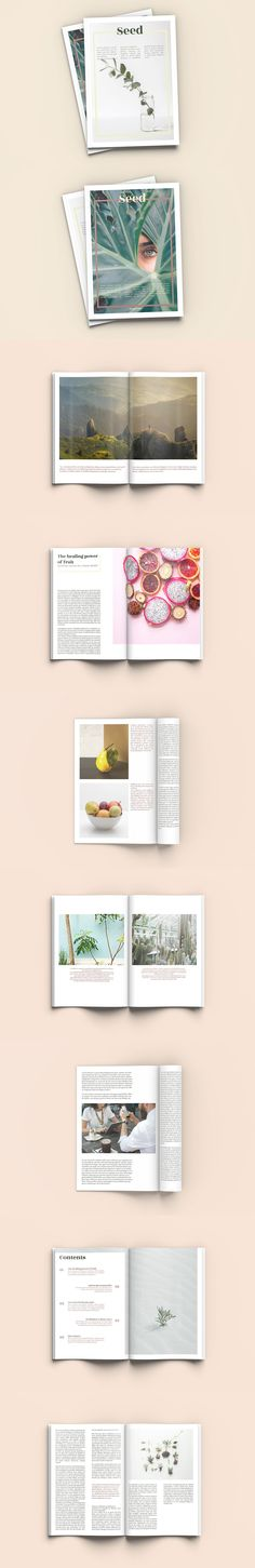 #Freebies : Seed - A4 #Magazine Template -Seed is a 40 pages #Indesign magazine template with a #minimal, clean and dynamic layout. Simply replace text and images with your own: the template is ready to be #printed or exported as a pdf. ( #lifestyle #travel #brochure #printable )
