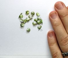 Presenting the world's tiniest Brussels Sprouts! 🥦 (there's no sprout emoji) 