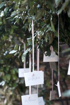 escort cards hanging from tree // photo by SweetTeaPhotography.com