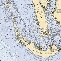 Pine Islands And Pine Island Florida On Pinterest