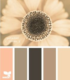 This site has 100s of color pallet combos.