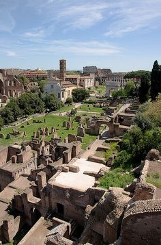 The Roman Forum is a rectangular plaza surrounded by the ruins of several important ancient government buildings at the centre of the city of Rome, Italy. Originally it was a marketplace. It was for centuries the centre of Roman public life: the site of triumphal processions and elections; the venue for public speeches, criminal trials, and gladiatorial matches; and the nucleus of commercial affairs. by Dmitry Shakin