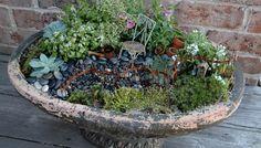 Beautiful container fairy garden.