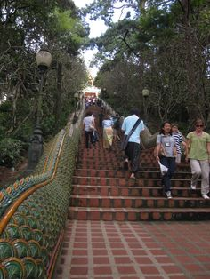 I have had the chance to climb up these stairs in Chiang Mai twice. There is a beautiful temple once you reach the top!