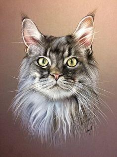 Pastel Portraits, Dog Portraits, Animal Paintings, Animal Drawings, Art Pastel, Frida Art, Image Chat, Cat Photography, Color Pencil Art