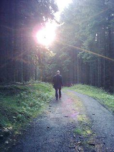 Wanderer, fall