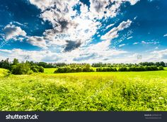Sunlight Breaking Through The Clouds Over The Field In The Forest Stockfoto…