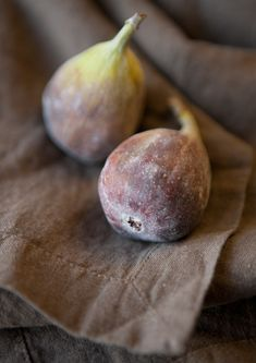 figs - I want to grow these!