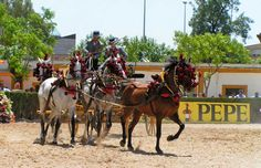 Feria del Caballo (Horse Fair)Jerez de la Frontera