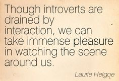 Introvert: I like to watch.   I didn't mean for that to sound dirty.  It just happened that way.