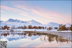 [Rondane] Good Morning Rondane!