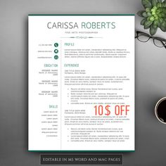 professional resume template for pages ms by visiontemplates - Professional Resume Sample