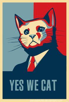 .Yes! We cat!