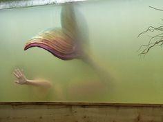 Bildresultat för merbella studios beauty in the water