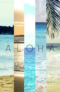 △ happy aloha friday followers!