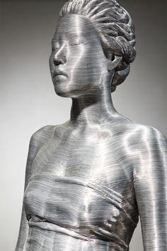 Sculptures Méticuleuses de fils d'Aluminium (2)