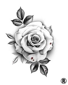 Dm or email for availability 🗓 rose tattoos, horticult Rose Tattoo Stencil, Rose Drawing Tattoo, Tattoo Design Drawings, Tattoo Sketches, Tattoo Outline, Drawing Sketches, White Rose Tattoos, Rose Flower Tattoos, Flower Tattoo Designs