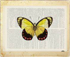 butterfly - vintage red heart butterfly printed on old dictionary page via Etsy