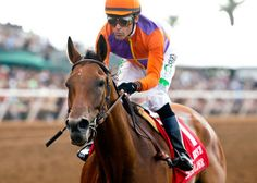 San Diego Horse Race » Beholder Puts in First Work on Comeback Trail