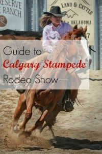A complete guide to Calgary Stampede, the greatest show on earth! One of the highlight during this cowboy festival is the rodeo show. Click to read more.
