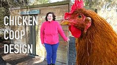 Use My Proven Experience When Building a Chicken Coop For Lasting Results