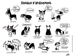 les-signaux-d-apaisement-2-2-.jpg (1024×791) Friends Poster, Dog Behavior, Family Dogs, Funny Dogs, Dog Language, Dog Poster, Positive Reinforcement, Drawings, Lily