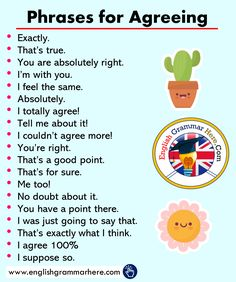 19 English Phrases for Agreeing - English Grammar Here